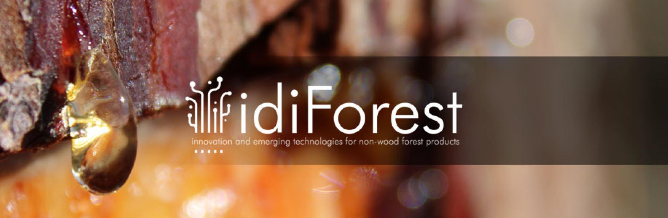 idiForest